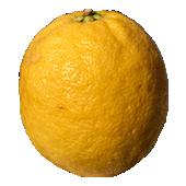 レモネード
